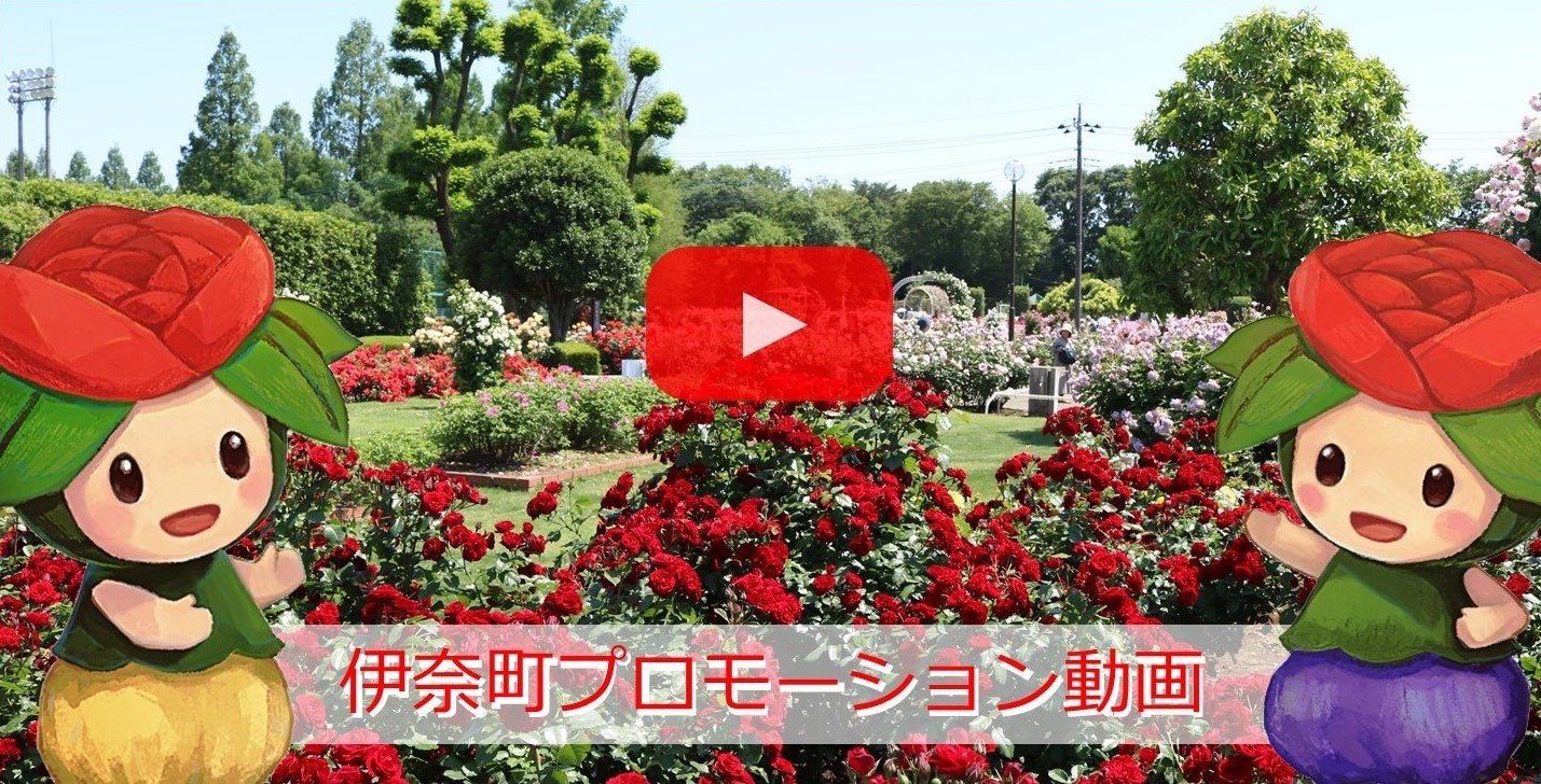 Ina Town promotion video